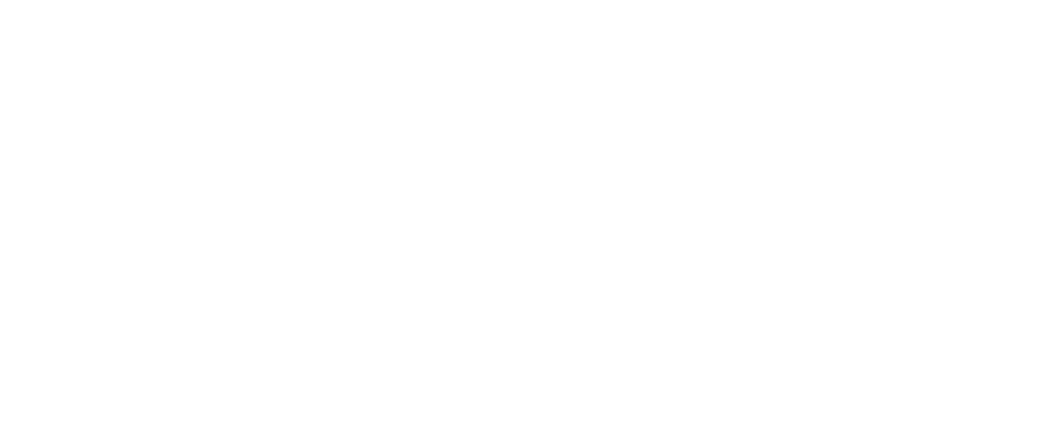 Web Vision Solutions